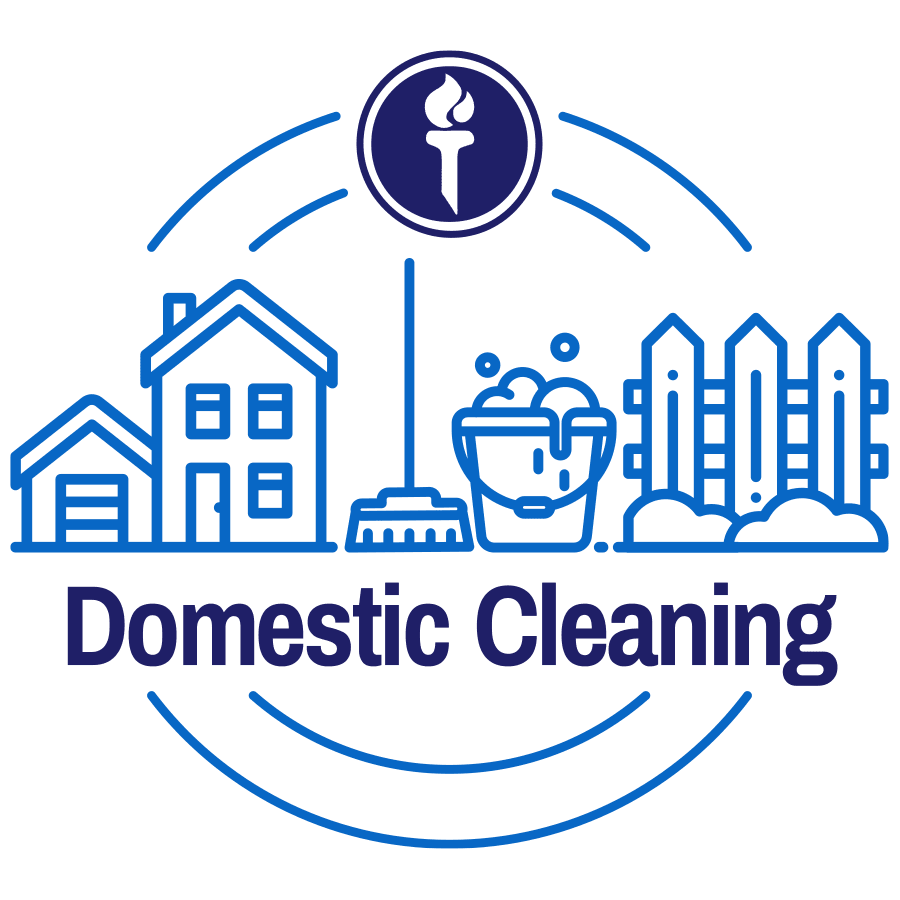 residential-cleaning-icon